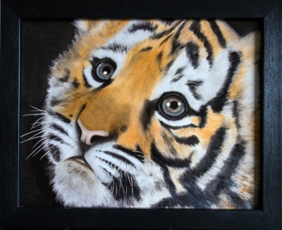 tiikerinpentu