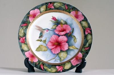 kolibri hibiscuksen kukalla